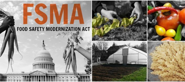 Food-Safety-Modernization-Act-FSMA-704x315