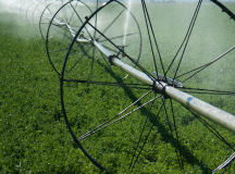 Comments Sought in Ag Water Component of FSMA