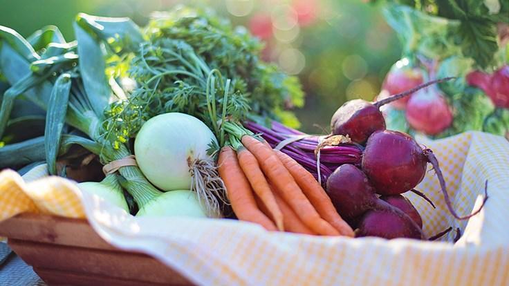 vegetables-2485055_1280 Pixabay