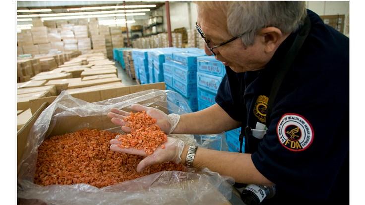 FDA import inspector